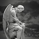Moonlit Angel by olga zamora