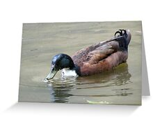 Darth Duck Greeting Card