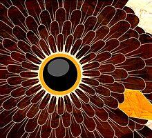 bird's eye ruffled feathers by sixsixninenine