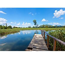 Wetland in Hong Kong Photographic Print