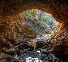 Golden Gully. by Julie  White