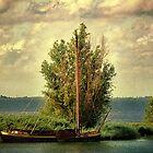 The boat ... by Johanna26