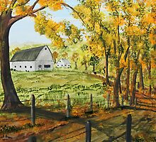 Country Lane Shadows by Jack G Brauer