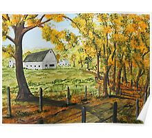 Country Lane Shadows Poster