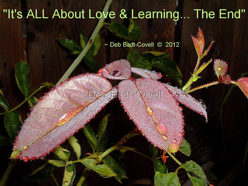 Love & Learning by Deb  Badt-Covell