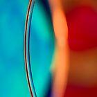 Iris by David Lamb