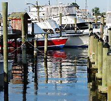 Marina Reflections by cc24