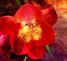 Riotous Spring by Ellen Cotton