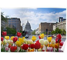 Colourful Wisconsin Capitol - USA Poster