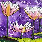 Pale Pink Waterlilies  by Alexandra Felgate