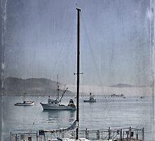 Early Morning In Avila Bay by CarolM