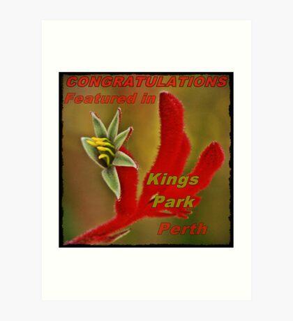 Kings Park Perth Banner Art Print