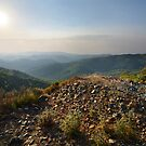 Living Rocks by Anton Gorlin