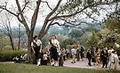 Girl scouts at Rochester Lilac Festival 19570512 0026  by Fred Mitchell