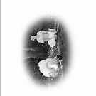 The Little Dancer Escapes - No.6s by markmason