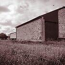 Freeling Railyard by Paul Thompson