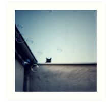 Bubble cat... Art Print