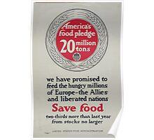 Americas food pledge 20 million tons 002 Poster