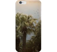 Tropical Storm iPhone/iPod Case iPhone Case/Skin