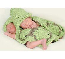 Baby Turtles Photographic Print