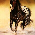 Appaloosa by Terry Bailey
