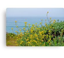 Pacific Coast Flora Canvas Print