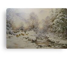 Down the Gill, Helvellyn, Cumbria Canvas Print