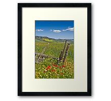 A View to Pienza Framed Print