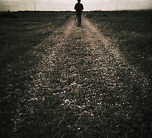 The desolate way by Nikki Smith