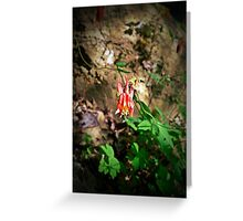 """""""Jester's Cap""""  Greeting Card"""