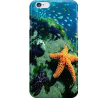 SEA CREATURES iPhone Case/Skin