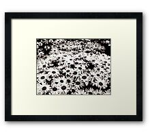 Flowers at Night Framed Print