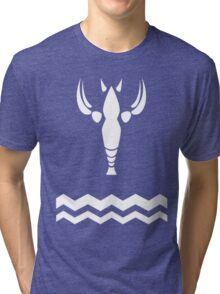 Wind Waker-Hero's New Clothes Tri-blend T-Shirt