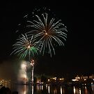 Nottingham Firework Display by Elaine123