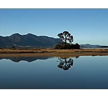 marshlands Photographic Print