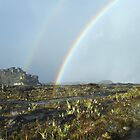 Roraima rainbow by dalsan