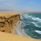 Paracas shore by dalsan