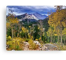 High In the Rockies - Rocky Mountain National Park Metal Print