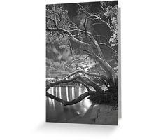 moonlit night at Kangaroo Point  Greeting Card