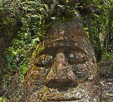 Rock Face, Floreana, Galapagos by bulljup
