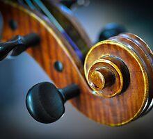 Violin Scroll 2 by stringdaydreams