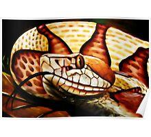 Copperhead (Agkistrodon contrortrix) Poster