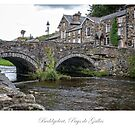 The village of Beddgelert by Jacinthe Brault