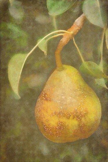 Pear in DAP Pastels with Texture by Robert Armendariz