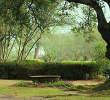 The Beautiful Landscape Of Oak Alley Plantation, Louisiana by anitahiltz