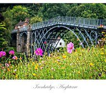 The Iron Bridge of Ironbridge by Jacinthe Brault