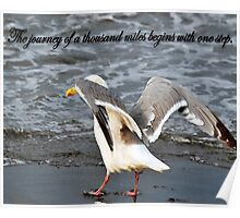 The Way Of The Seagull Motivational Saying Poster