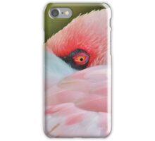 America 7 iPhone Case/Skin