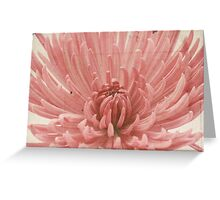 Pink Dahlia Parchment Paper. Greeting Card