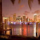 Downtown Miami at night by reisefoto